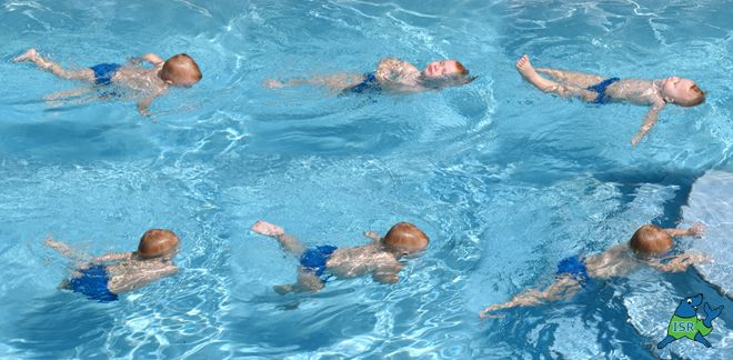 teaching swimming and water safety course manual